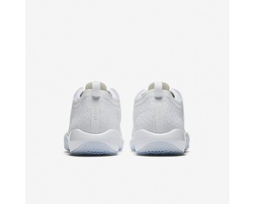 Air Jordan Trainer 1 Low Mens Shoes White/Pure Platinum/White Style: 845403-100